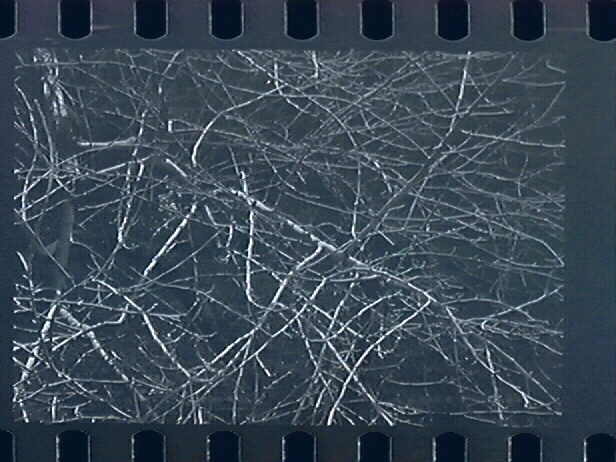 http://cdn.calisphere.org/affiliates/images/omca/omca_LNG57207.4_1_2.jpg