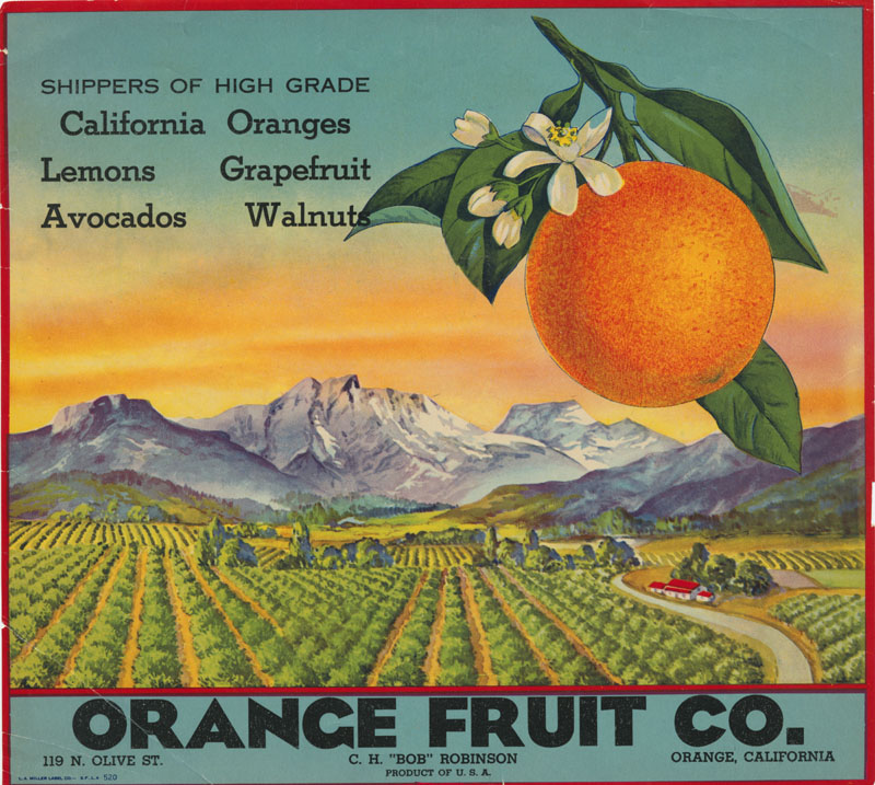 Orange Fruit Company