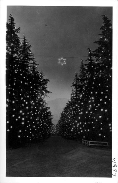 christmas tree lane altadena caption from frasher indexes