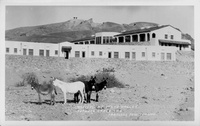 Natives at Death Valley Furnace Creek Inn