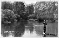 Trout Fishing Rush Creek Mono, Caif.