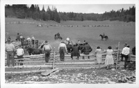 Rodeo Days at V.T. Ranch Kaibab National Forest - Arizona