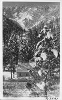 Winter Time in Wrightwood Mountain, Wrightwood, California