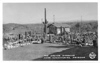 The Cactus Gardens near Wickenberg Arizona