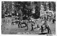 Frontier Pack Outfit on Upper Rush Creek, Mono Co., Calif