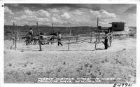 Pueblo Indians, threshing Wheat in primitive ways, New Mexico