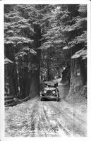 Big Sur Route, California