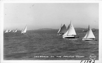 Sailboats on the Pacific Ocean