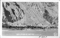 Seal Rocks at Avalon Santa Catalina, California
