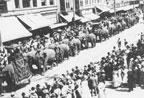 Ringling Bros. Circus Parade on Fourth Street in 1910