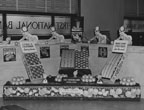 Display from the California Citrus Industry set up in the First National Bank