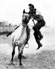 Pony Express at the Birthday Celebration Centennial in 1969