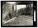 [Close up view of railroad tracks under a bridge]