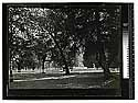 [Group of trees near Fort Gaston buildings on Hoopa Valley Reservation]