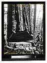 [Redwood Falling - Vances/unknown]