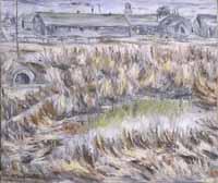 Jerome Swamp