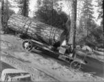 Truck Hauling a Log down a Steep hill from Routts Mill