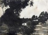 Coronado's Second Public School Building, September 1887.