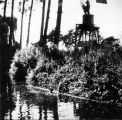 Pond and windmill in Dublin, (c. 1920s), photograph