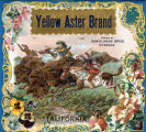 "Crate label, ""Yellow Aster Brand."" Packed by Sandilands Bros. Riverside, Calif."