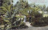 """Cawston Ostrich Farm Postcard: """"View at Gardens"""""""