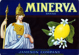 "Crate label, ""Minerva Brand."" Grown and Packed by Jameson Company, Corona, Riverside Co., Calif."