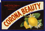 "Crate label, ""Corona Beauty Brand."" Grown and packed by Corona Foothill Lemon Co. Corona, Riverside Co., Calif."
