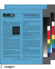 Vietnamese in the United States health brief