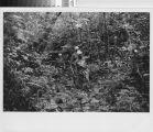 Soldiers on patrol - Vietnam