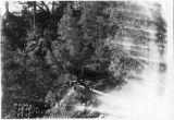 Diversion Dam West Fork Black Rock Creeks to Balch Creek