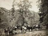 Picnic party at Fuller Mill in the San Bernardino Mountains near Idyllwild, California