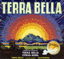 "Crate label, ""Terra Bella Brand."" Grown and packed by Terra Bella Citrus Assn. Terra Bella, Tulare Co., Calif."