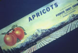 "Photograph of Apricot crate label, """"Apricots, Grown and Packed by Pioneer Fruit Farm, E.E. Seely and Sons"