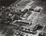 Aerial view of Citrus, 1954