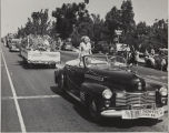 Marjorie Schmidt at the Cherry Festival Parade in a 1941 Cadillac.