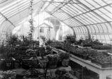 [Campus greenhouse]