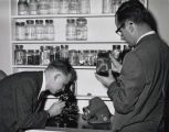 Two men in a science lab. One looking at specimens in glass jars, the other looking into a microscope.