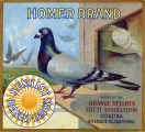 "Crate label, ""Homer Brand."" Packed by the Orange Heights Fruit Association."