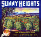 "Crate label, ""Sunny Heights."" Grown on the sunny heights of Redlands. Packed by Redlands Co-Operative Fruit Assn. Redlands, Calif."