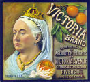 """Crate label, """"Victoria Brand."""" Grown and packed on Arlington Heights by Victoria Avenue Citrus Assn. Riverside, Calif."""