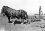 [Farmworker with horses and plow in Oxnard, California]