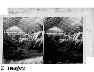 Palm and Lilly Room - Garfield Park Conservatory.  Chicago, Ill.