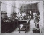 Cawston Ostrich Farm Processing Room, 1912