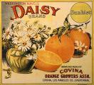 Daisy label
