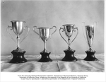 Sample cups for selecting trophy, winning team in cheese judging, Wester Dairy Products Show