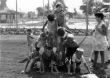 Children forming a human pyramid