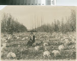 Woman Sitting in Pumpkin Patch