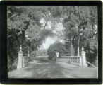 Photograph of a bridge and path at Mills College