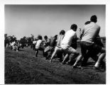 Photograph of tug of war competition
