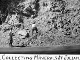 Collecting minerals at Julian / Lee Passmore